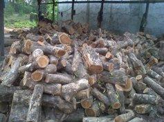 bahan kayu parket